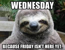 Wednesday Sloth